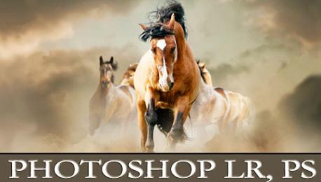 Photoshop Lightroom и PS: обработка на снимки